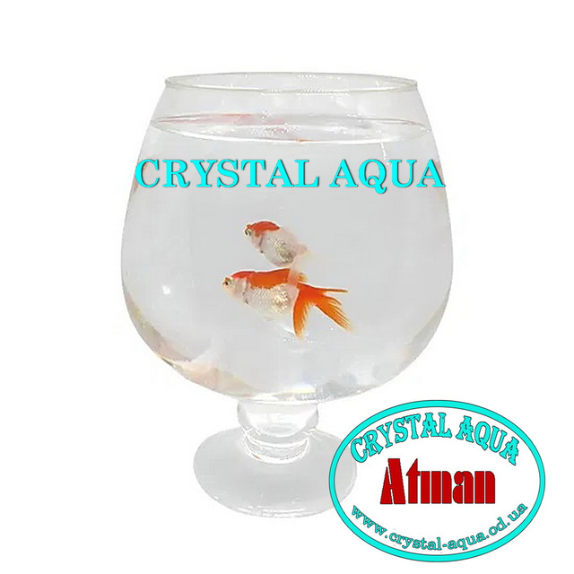 Круглые аквариумы. Аквариум бокал