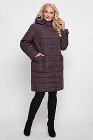 Куртка больших размеров женская Вера Шоколад Размеры52, 54, 56, 58, 60, 62, 64