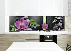 Квіти та рослини