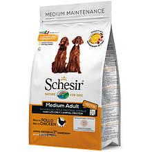Сухой корм для собак средних пород Шезир Schesir Dog Medium Adult Chicken с курицей 3 кг