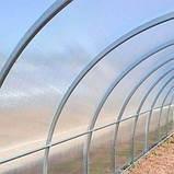 Теплица Oscar Садовод Агро 24 м², 300х800х200 см с сотовым поликарбонатом 4 мм SKL54-240831, фото 7
