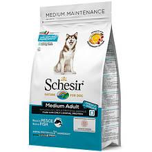 Сухой корм для собак средних пород Шезир Schesir Dog Medium Adult Fish с рыбой 12 кг