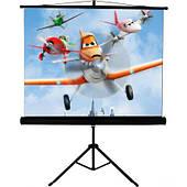 "Экран для проектора на треноге WALFIX SNT-3 (100"", 200х150 см, 4:3)"