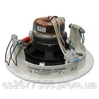Гучномовець стельовий 3АС100ППм, фото 2