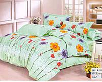 Комплект постельного белья Casa New Fashion Евро 230х250 см Ранфорс CasaNewFashion M-381 (M-381)