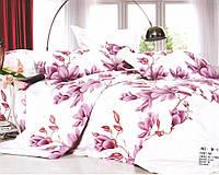 Комплект постельного белья Casa New Fashion Евро 230х250 см Ранфорс CasaNewFashion M-13 (M-13)
