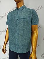 Мужская рубашка Amato. AG  29846(b). Размеры: Батал 2XL,3XL,4XL,5XL., фото 1