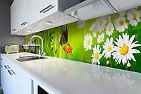 Кухонный фартук самоклеющийся Бабочка 02 (скинали для кухни наклейка ПВХ) трава ромашки зеленый 600*2500 мм