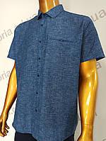 Мужская рубашка Amato. AG  29846(si). Размеры: Батал 2XL,3XL,4XL,5XL., фото 1
