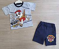 """Костюм детский шорты и футболка Piti """"Щенячий патруль"""" серый,синий,голубой на мальчика 1-2-3 года"""