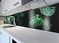 Кухонный фартук Листья Монстерры (наклейка виниловая скинали самоклеющаяся пленка) зеленый 600*3000 мм