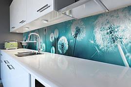 Кухонний фартух самоклеющийся Бірюзові Кульбаби скіналі для кухні наклейка ПВХ квіти блакитний 600*2500 мм