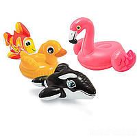 Надувной набор игрушек 4 в 1 Intex 58590-4 «Зверюшки» (Тедди, Дакотта, Вейн, Фламинго), (Оригинал)