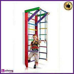 Спортивный деревянный цветной уголок «Барби 2-220» ТМ Sportbaby для детей от 6 лет, фото 2