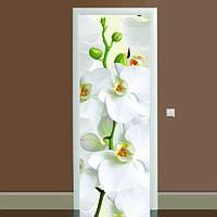 Виниловая наклейка на дверь Орхидея (полноцветная фотопечать пленка для двери) ламинированная двойная 650*2000 мм