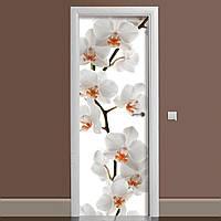 Виниловая наклейка на дверь Орхидея 02 ламинированная двойная (пленка на мебель фотопечать белая цветы)