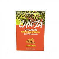 Жевательная резинка со вкусом корицы органическая Chicza 30г