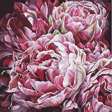 Картина по Номерам Буйство красок 40х40см Идейка
