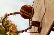 Мяч баскетбольный Spalding NBA Player Ball Lebron James размер 7, фото 3