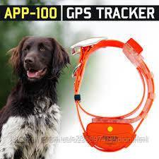 Трекер для охоти з GPS Hunter APP 100 GPS трекер для собак HUNTER App 100 Оранжевый