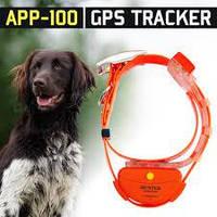 Трекер для охоти з GPS Hunter APP 100 GPS трекер для собак HUNTER App 100 Оранжевый, фото 1