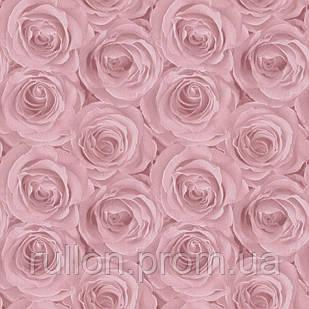 Обои настенные флизелиновые розовые розы AS Creation Roses 37644-1