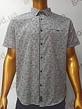 Мужская рубашка,Батал, Amato. AG29836r. Размеры: 2XL,3XL,4XL,5XL., фото 3