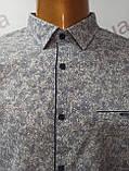Мужская рубашка,Батал, Amato. AG29836r. Размеры: 2XL,3XL,4XL,5XL., фото 5