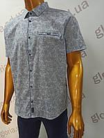 Мужская рубашка Amato. AG29836s. Размеры: 2XL,3XL,4XL,5XL.