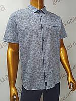 Мужская рубашка Amato. AG29836se. Размеры: 2XL,3XL,4XL,5XL.