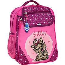 Рюкзак школьный Bagland Отличник 20 л. 143 малиновый 167к (0058070)