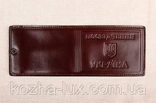 Кожаная обложка Посвідчення Україна шоколадный 012-003