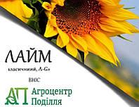 Насіння соняшнику Лайм 105 дн. устойчевый до 7 рас вовчка (новинка 2019 р.!)