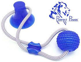 Игрушка для собак Мяч на веревке с присоской Perfect Power Синий Игрушка для домашних животных жевательная