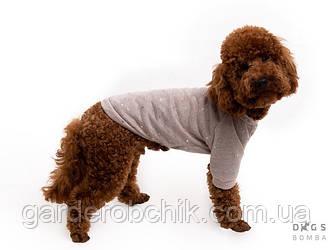 """Свитер, кофта, толстовка """"Блестящие Звезды"""" для собаки, кошки Y-180. Одежда для животных"""