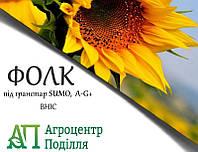 Насіння соняшнику під гранстар Фолк 110 дн.(безкоштовна доставка) Урожай 2018 р.