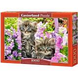 """Пазли """"Кошенята в саду"""" Castorland 1000 елементів, фото 2"""