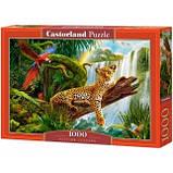 "Пазли ""Леопард"" Castorland 1000 елементів, фото 2"