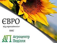 Насіння соняшнику під евролайтинг Євро ІМІ 100 дн. (стійкий до вовчка - 7 рас) ( (безкоштовна доставка)