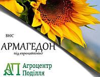 Насіння соняшнику під евролайтинг АРМАГЕДОН ІМІ 110 дн. ВНІС (безкоштовна доставка)
