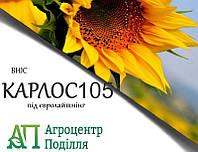 Насіння соняшнику під евролайтинг КАРЛОС 105 ІМІ ВНІС (безкоштовна доставка)