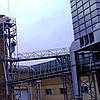 Комбікорм Мікс для телят (власне виробництво), фото 2
