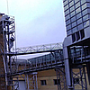 Комбікорм предстартерний для поросят (власне виробництво), фото 2