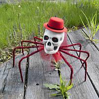 Скелеты, пауки, мыши, рептилии