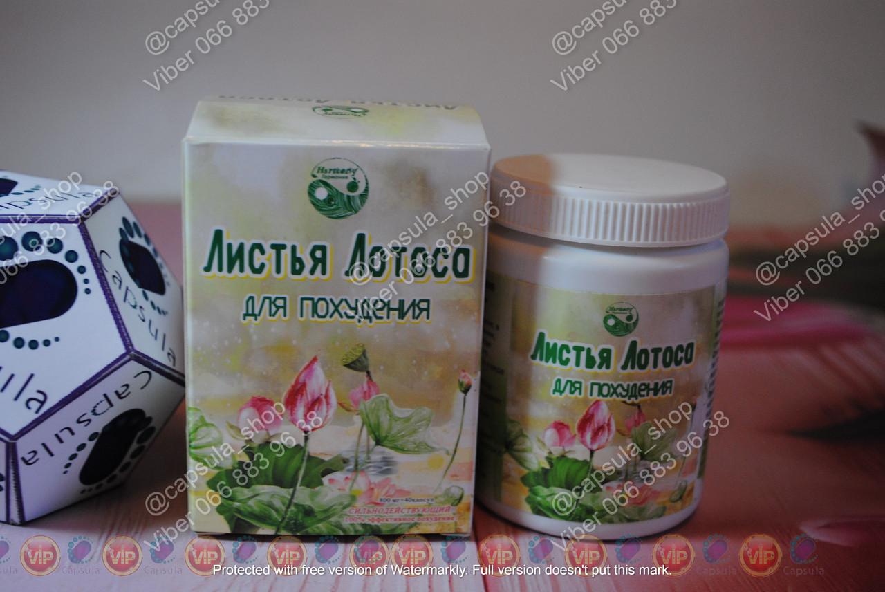 Листья Лотоса для похудения схуднення жиросжигатель, от аппетита, от 10 капс. 30 капсул