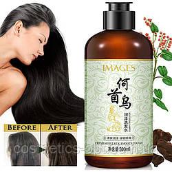 Шампунь с экстрактом Женьшеня и Горца многоцветкового Images Fresh Moist Silk Smooth Tough Shampoo, 300 ml