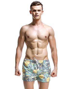 Мужские шорты Seobean, фото 2