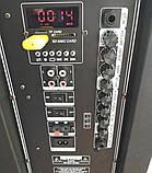Аккумуляторная колонка с микрофонами Temeisheng SP-1509 / 400W (USB/Bluetooth/Пульт ДУ/Светомузыка), фото 4