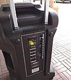 Аккумуляторная колонка с микрофонами Temeisheng SP-1509 / 400W (USB/Bluetooth/Пульт ДУ/Светомузыка), фото 7
