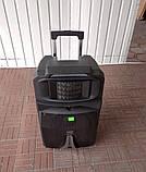 Аккумуляторная колонка с микрофонами Temeisheng SP-1509 / 400W (USB/Bluetooth/Пульт ДУ/Светомузыка), фото 6